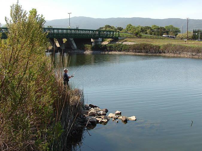 Bridge by Coleman Rd
