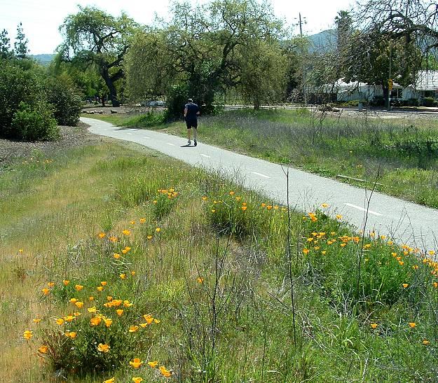 Lower trail near Carrabelle Park