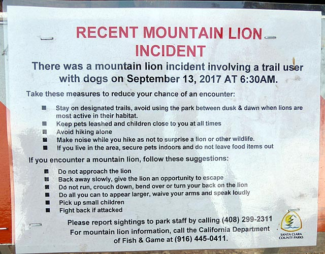 Mountain Lion sign at McAbee entrance